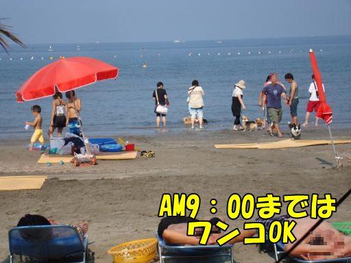 20100721-19.jpg