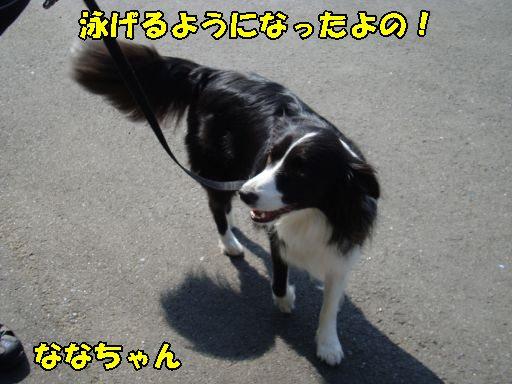 20100810-2