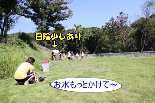 20100813-4.jpg