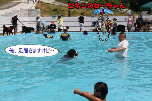 20100829-10.jpg