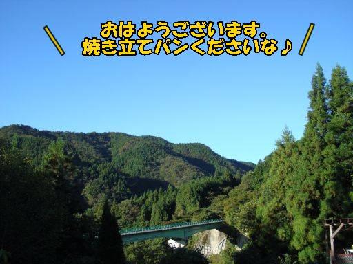 20101011-7.jpg