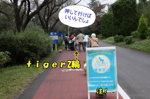 20101019-8.jpg