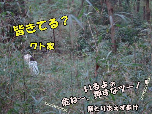 20101021-8.jpg