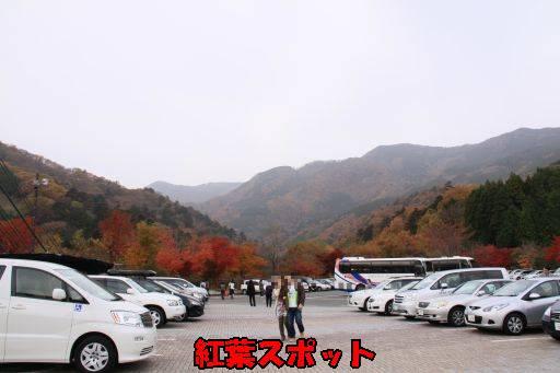 20101111-14.jpg