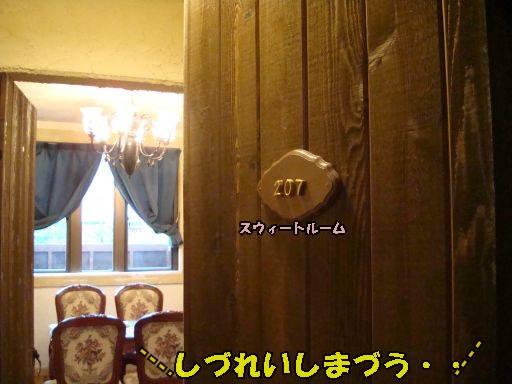 20101113-8jpg.jpg