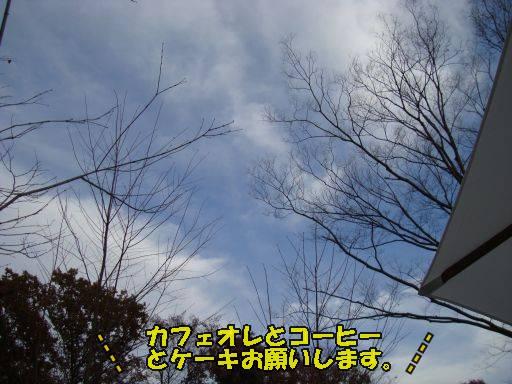 20101119-30.jpg