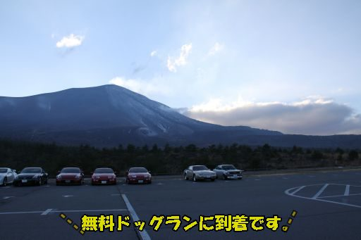 20101121-13.jpg