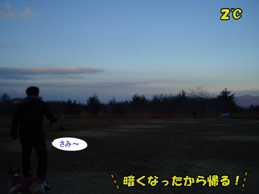 20101121-21.jpg