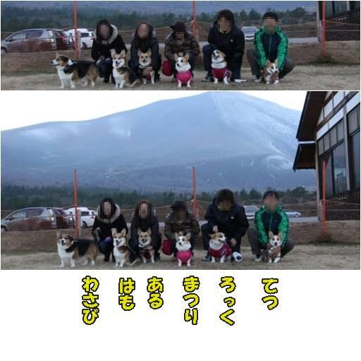 20101121-24.jpg