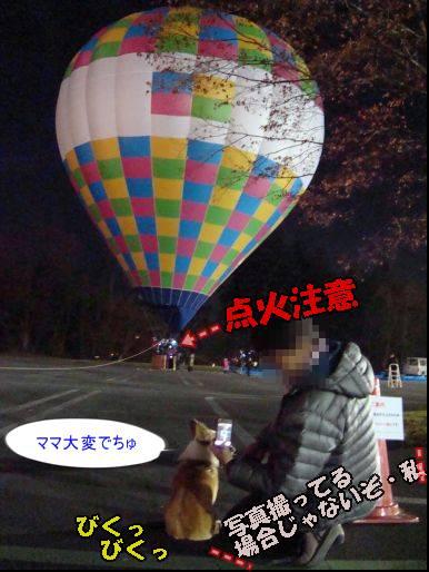 20101121-29.jpg