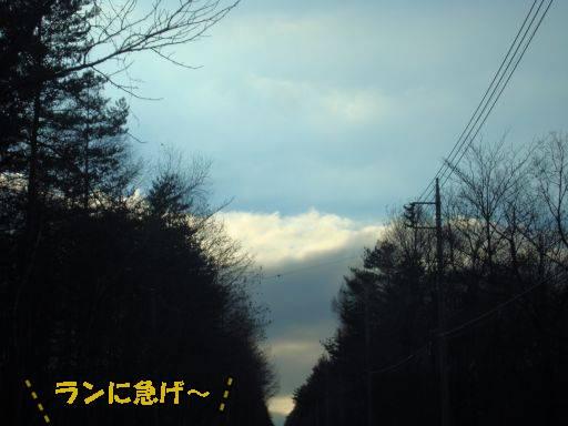20101121-4.jpg