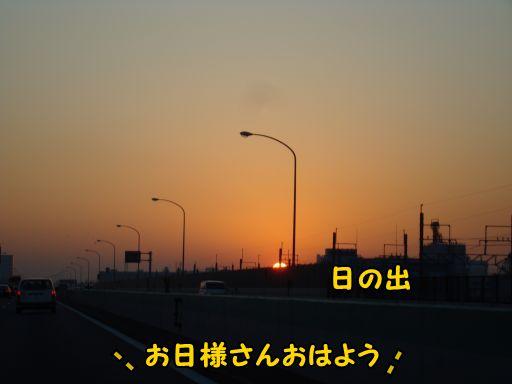 20101127-510.jpg