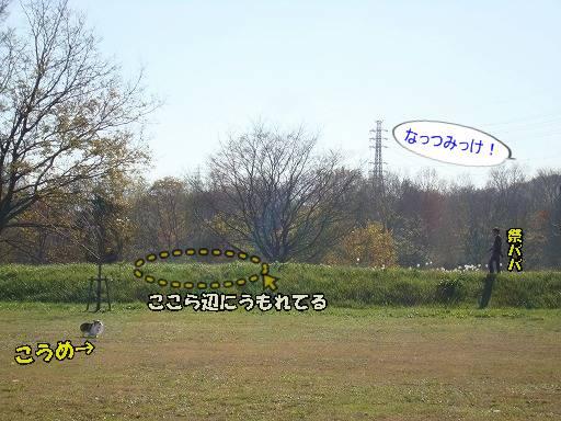 20101205-10.jpg