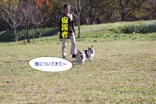 20101205-14jpg.jpg