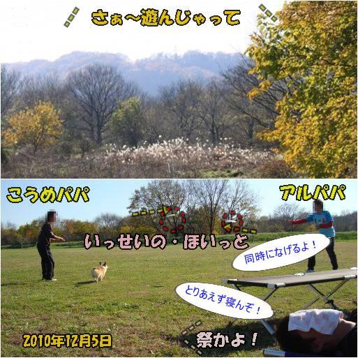 20101207-30.jpg