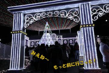 20101211-10.jpg