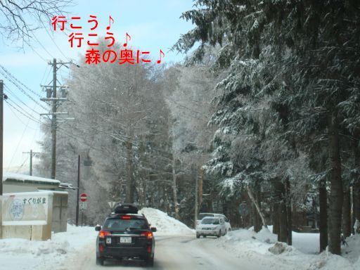 2010210-20.jpg