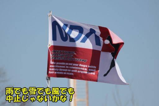 20110213-51.jpg