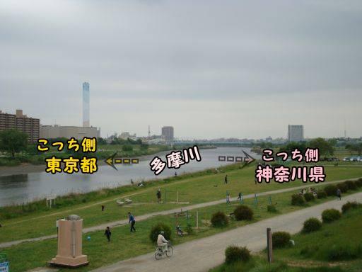 20110508-7.jpg