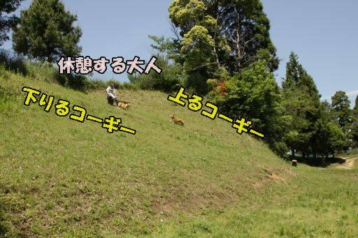 20110519-116.jpg