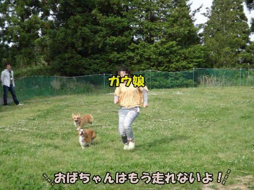 20110521-15.jpg