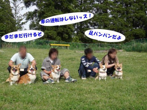 20110521-21.jpg