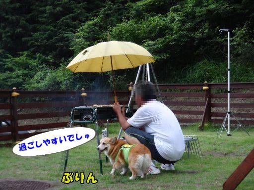 20110713-3.jpg