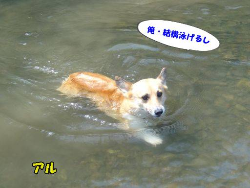 20110721-4.jpg