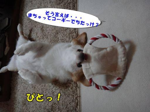 20110807-2.jpg