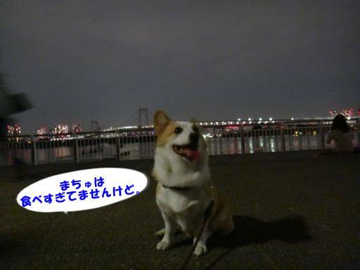 20110809-21.jpg