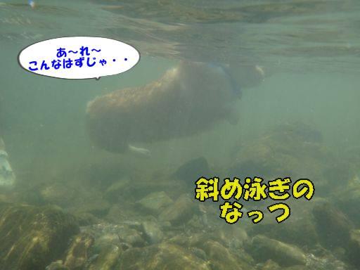 20110813-16.jpg