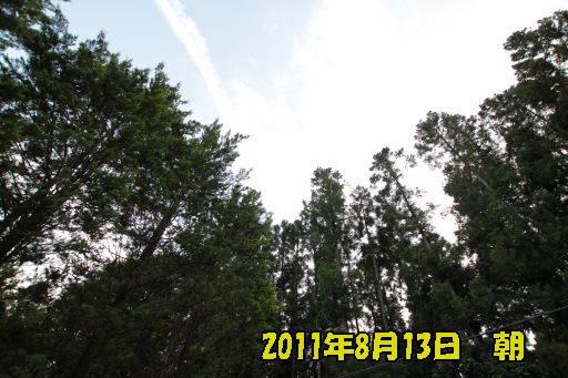 20110812-70