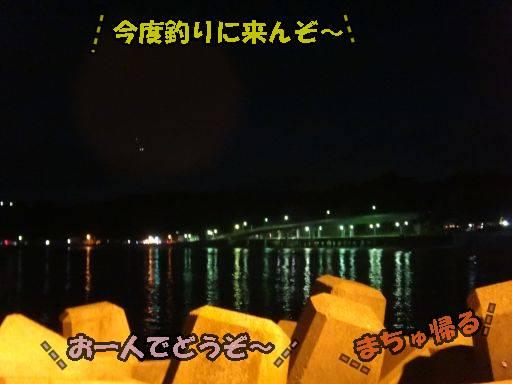 20110913-11.jpg
