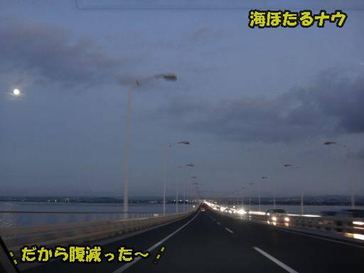 20110913-6.jpg