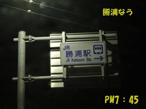 20110913-8.jpg