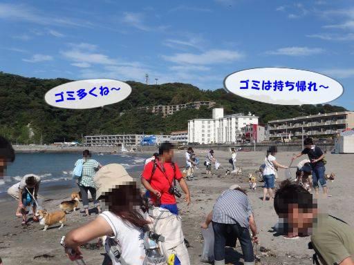 20110917-11.jpg