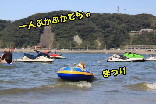 20110919-22.jpg