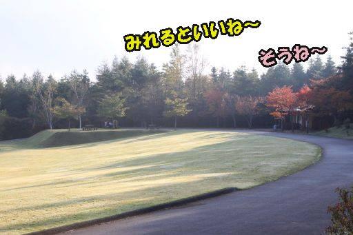 20111011-2.jpg
