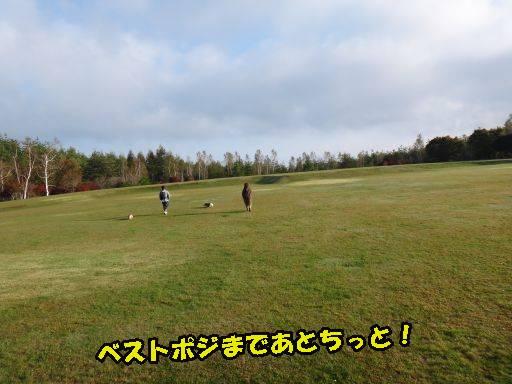 20111011-3.jpg