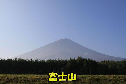 20111011-4.jpg