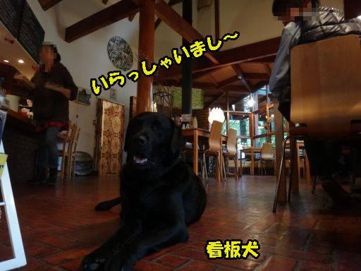 20111013-14.jpg