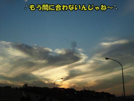 20111021-2.jpg