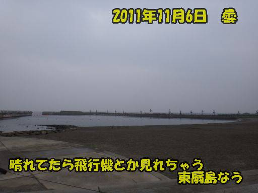 20111105-3.jpg
