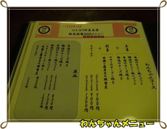 20111121-14jpg.jpg