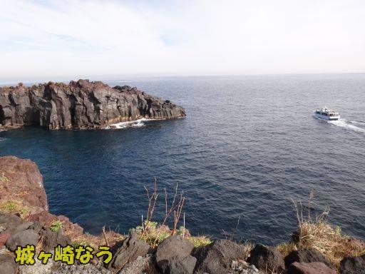 20111131-3.jpg