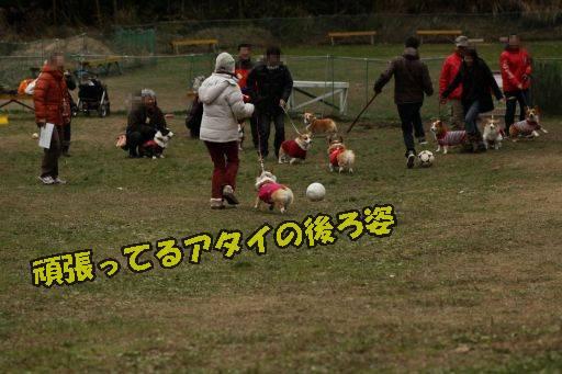 20111226-12.jpg