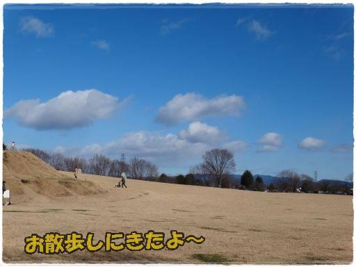 20120105-22.jpg