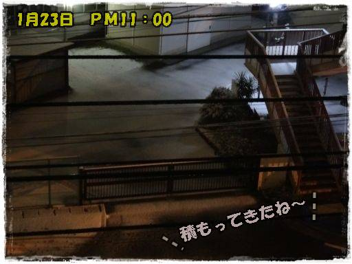 20120117-1.jpg