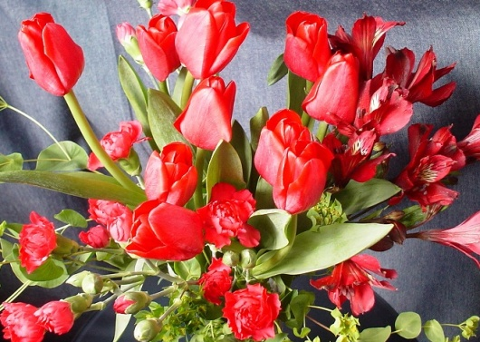 2009年2月17日の花束