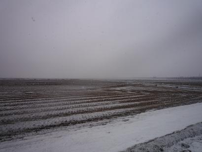また雪景色・・・。